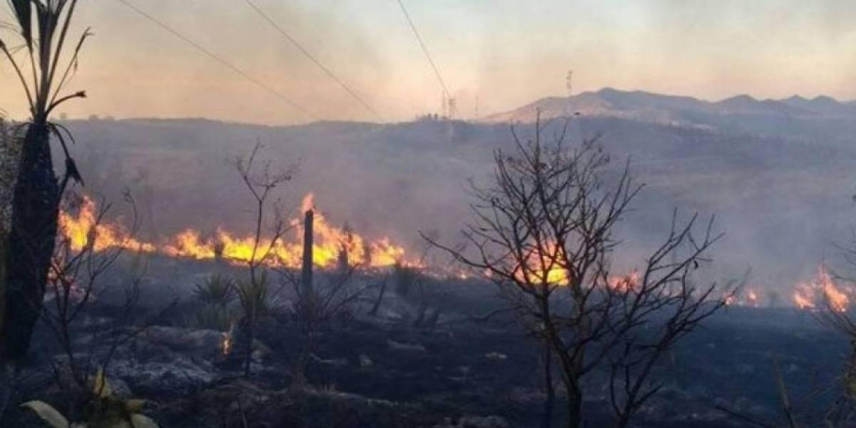 México en llamas: ¿Por qué hay tantos incendios?