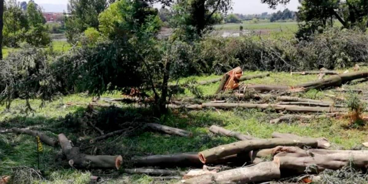 Alerta por obras que ponen en peligro el humedal Juan Amarillo