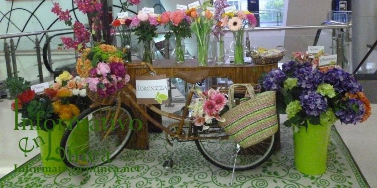 Novo-Centro celebra 5to Festival de las Flores
