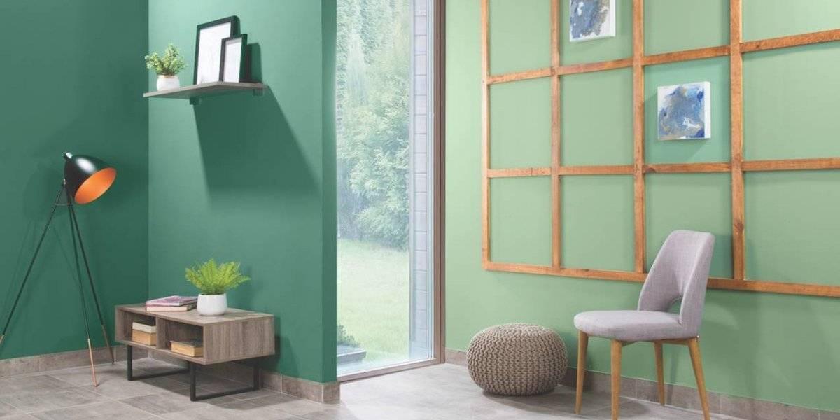 Colores en tendencia que harán vibrar tu hogar