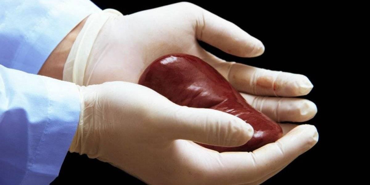 Declaración de Vicente Fernández, horrenda y homofóbica: paciente en espera de un órgano