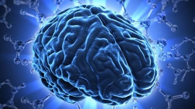 México cerebro