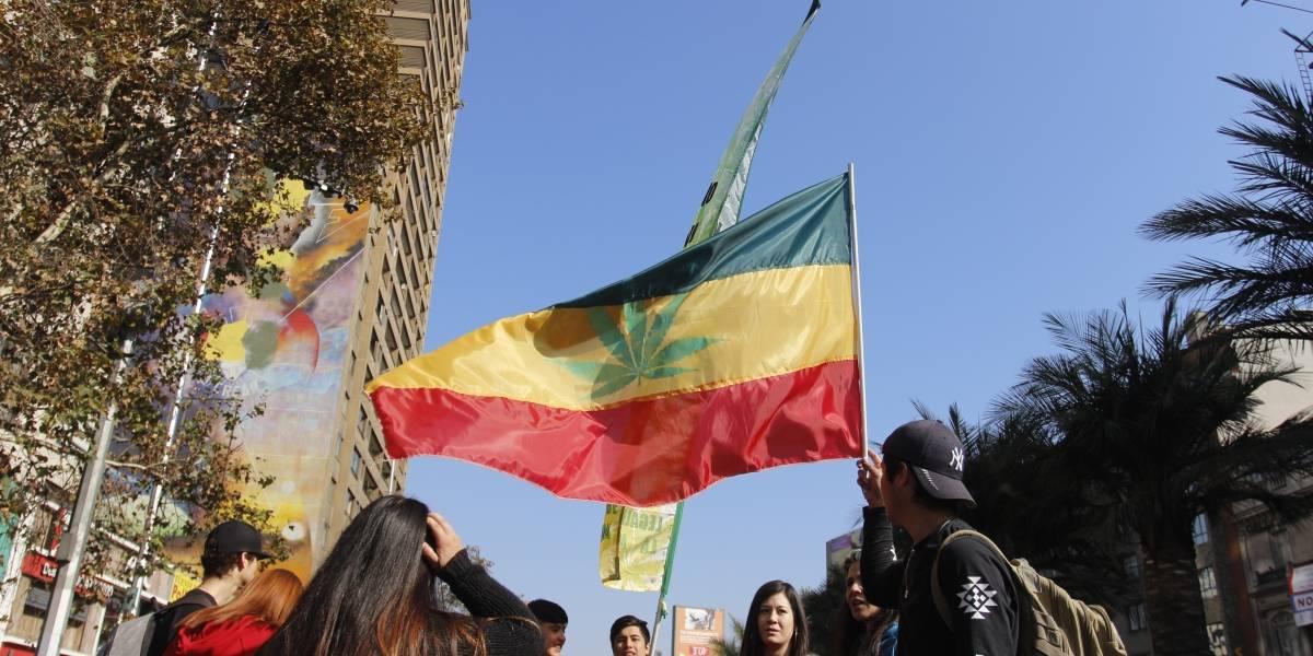 #CultivaTusDerechos: marcha por la legalización de la marihuana contó con cerca de 10 mil asistentes
