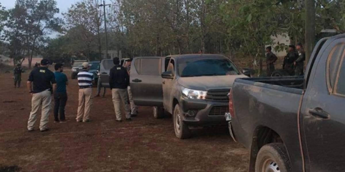 Encuentran narcolaboratorio y 40 mil plantas de coca en Colón