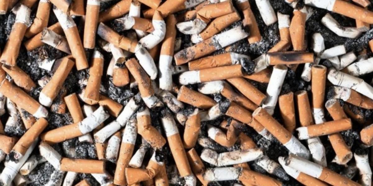 La verdad sobre tirar los residuos de cigarro a la calle