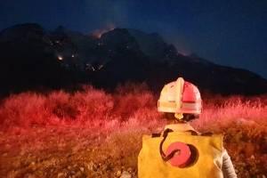 https://www.publimetro.com.mx/mx/nuevo-leon/2019/05/19/avanza-un-65-control-de-incendio-forestal-ocasionado-por-volcadura-de-trailer.html