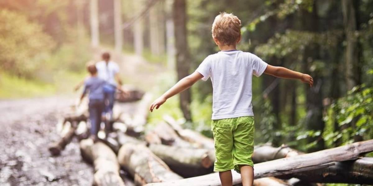 """""""Los niños deben estar conectados a la naturaleza"""": Tanja Sobko"""