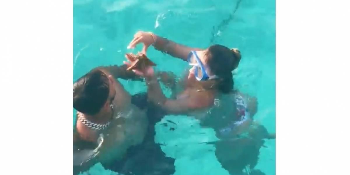 Karol G salió regañada por jugar con una estrella de mar; dicen que la pudo haber lastimado