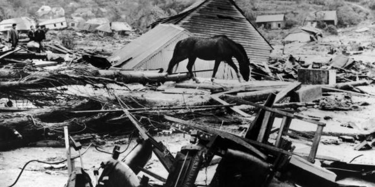Tres terremotos, un devastador tsunami y una explosión volcánica en horas: así fue el mayor cataclismo de la historia que afectó a Valdivia en 1960
