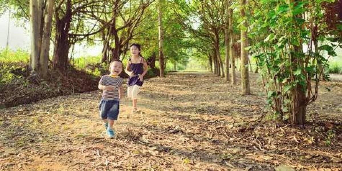 """Tanja Sobko: """"Los niños están más desconectados de la naturaleza"""""""