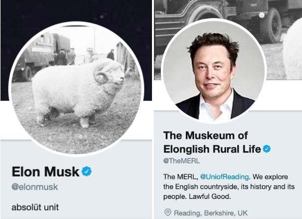 Elon Musk contrató como community manager de Tesla a un hombre que supo utilizar los memes a su favor