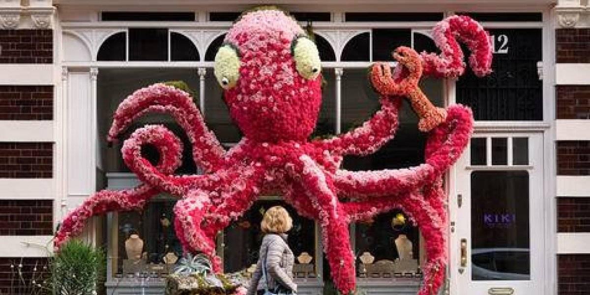 Increíbles decoraciones florales aparecen en Londres