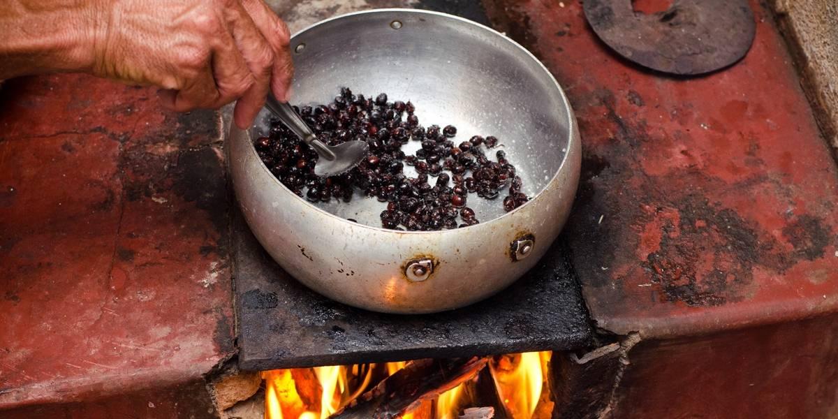 IBGE: Um quinto das famílias brasileiras usa lenha ou carvão para cozinhar