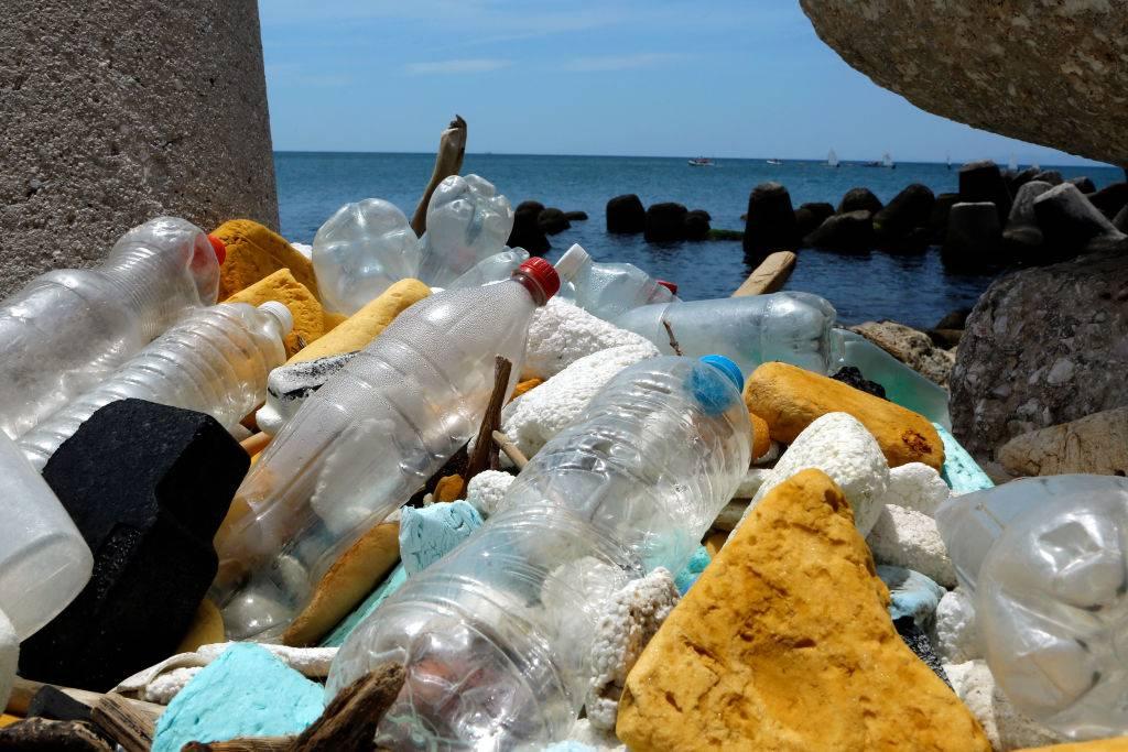 Descubren sorprendentes microorganismos capaces de comer parte del plástico que flota en los océanos