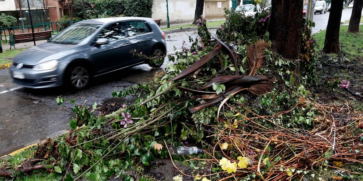 Ráfagas de viento provocan caída de árboles y cortes de luz en diversos sectores de Santiago