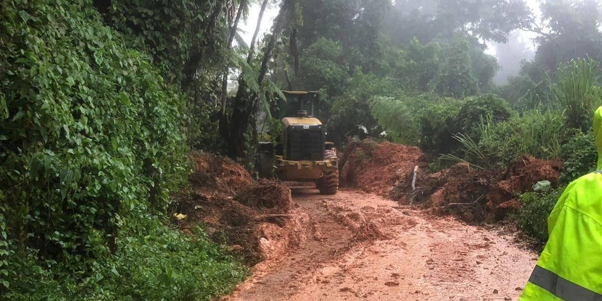 Con paso parcial familias afectadas por derrumbe en Utuado