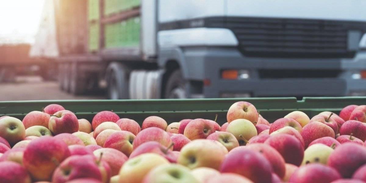 Educación contratará transportistas para el traslado de alimentos de los almacenes