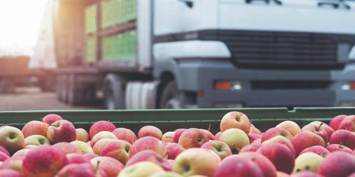 Urgen fondos centros de distribución de alimentos