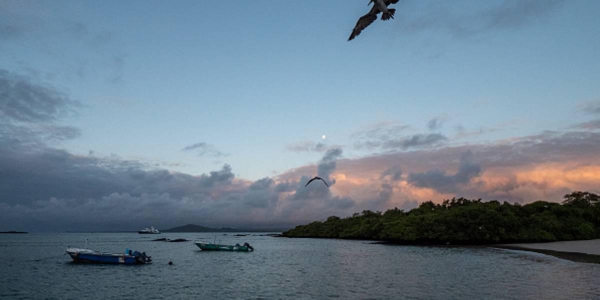 Ecuador aclara que EE.UU. no podrá usar Galápagos como base militar