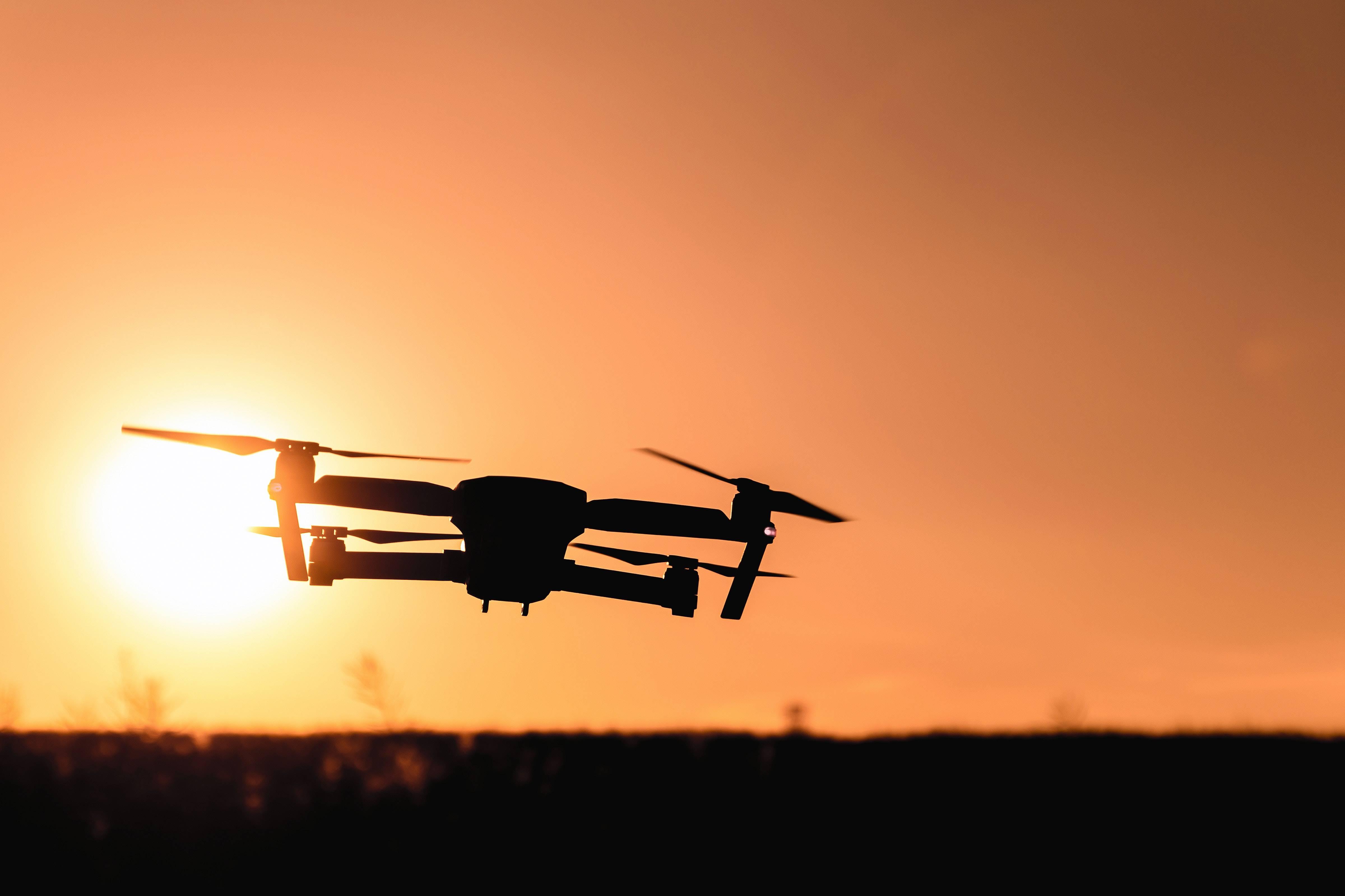Una especie de monos africanos creó un sonido especial para alertar sobre la presencia de drones cercanos