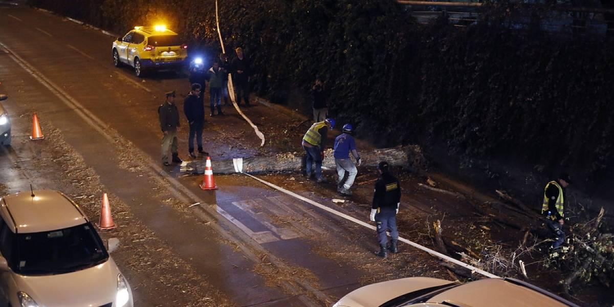 Sistema frontal en Santiago: 11.950 clientes sin energía eléctrica tras lluvias y fuerte viento en la Región Metropolitana