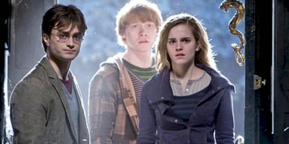 El sueño de todos los fanáticos: crean bares de pociones con temática de Harry Potter