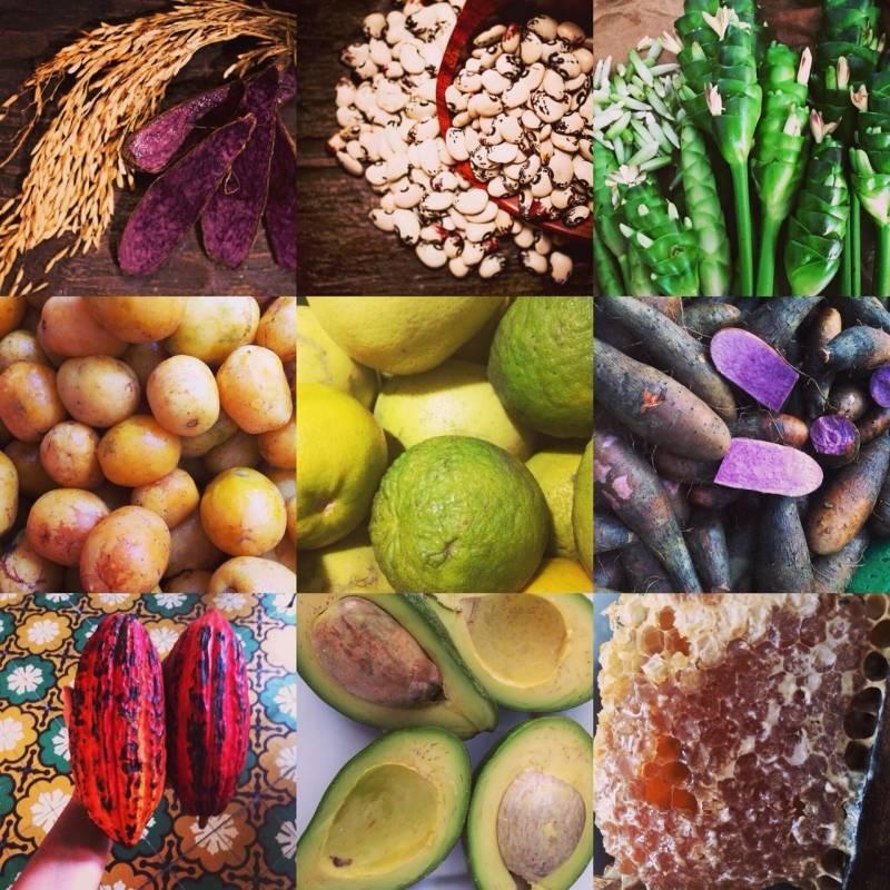 Productos de los Montes de María. The Jari´s Farm