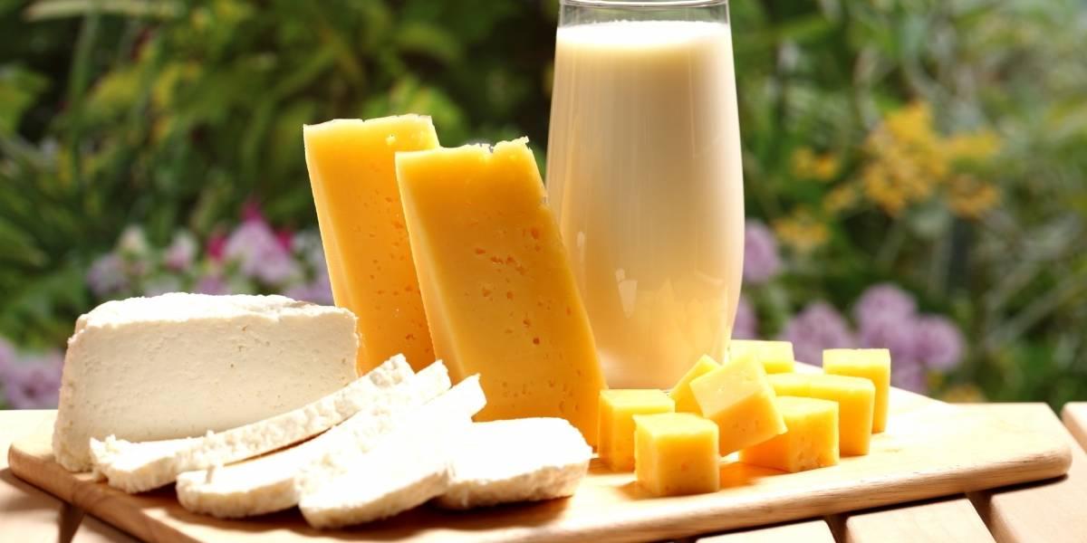 Productores de lácteos piden que no se permita el ingreso de productos hondureños
