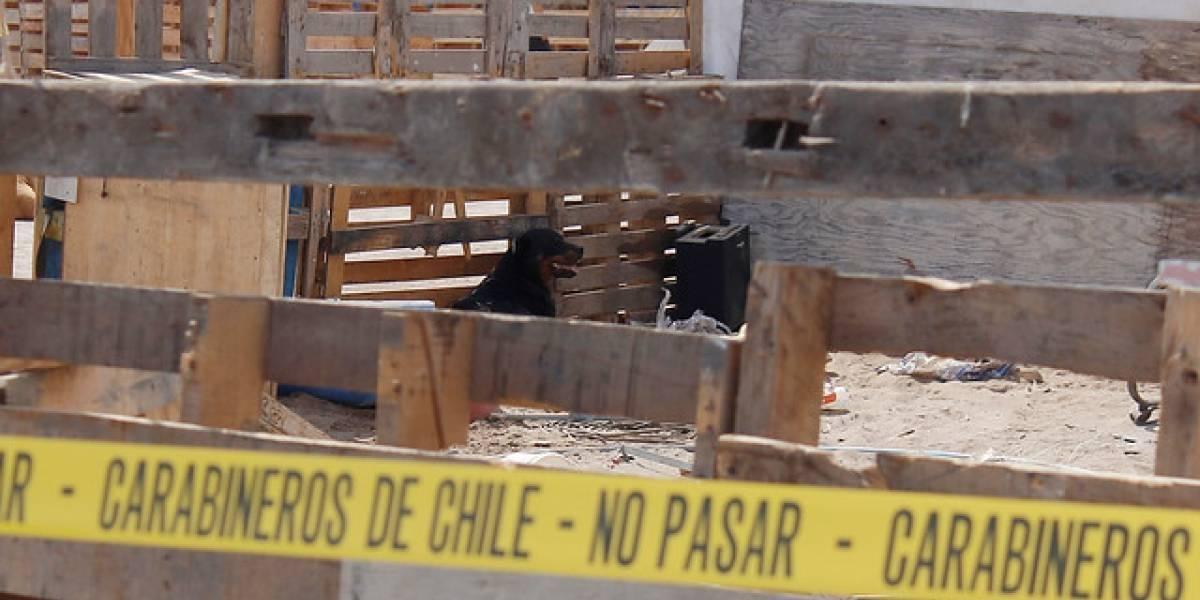 Fatal descuido: menor de tres años murió tras ser atacado por dos perros Rottweiler en Casablanca