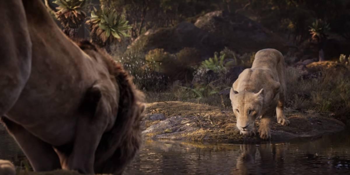 O Rei Leão: novo teaser foca em Nala, personagem dublada por Beyoncé