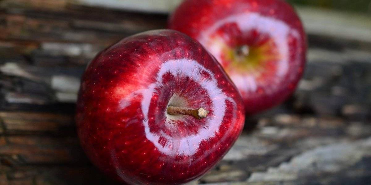 Vitamina de maçã ajuda a emagrecer e controlar colesterol