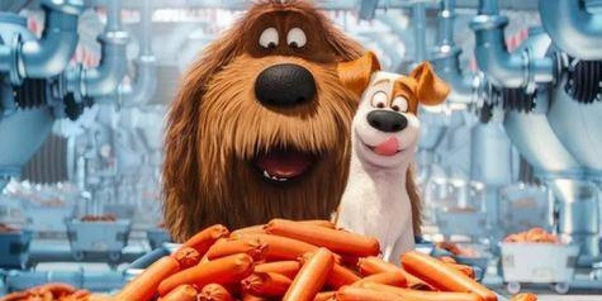 La vida secreta de las mascotas 2', se estrena hoy en los cines de RD