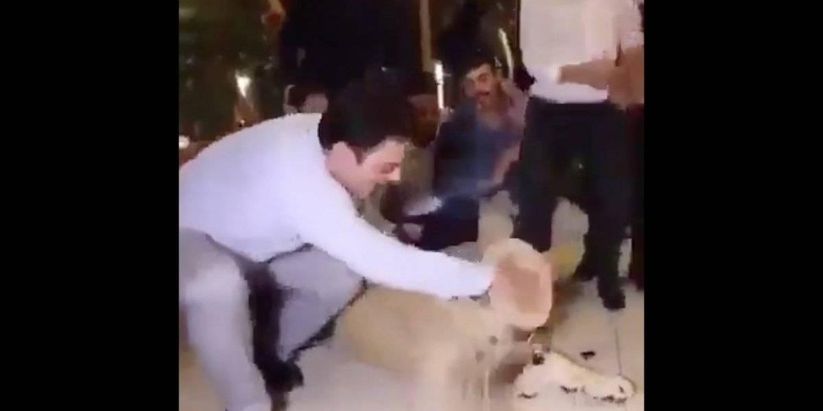 Indigna en redes 'pastelazo' de cumpleaños a león