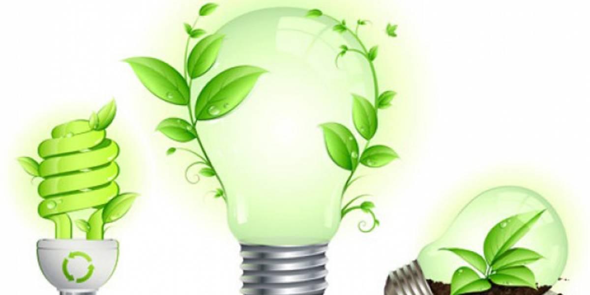 Cómo evitar el derroche de energía en las empresas y mitigar el cambio climático