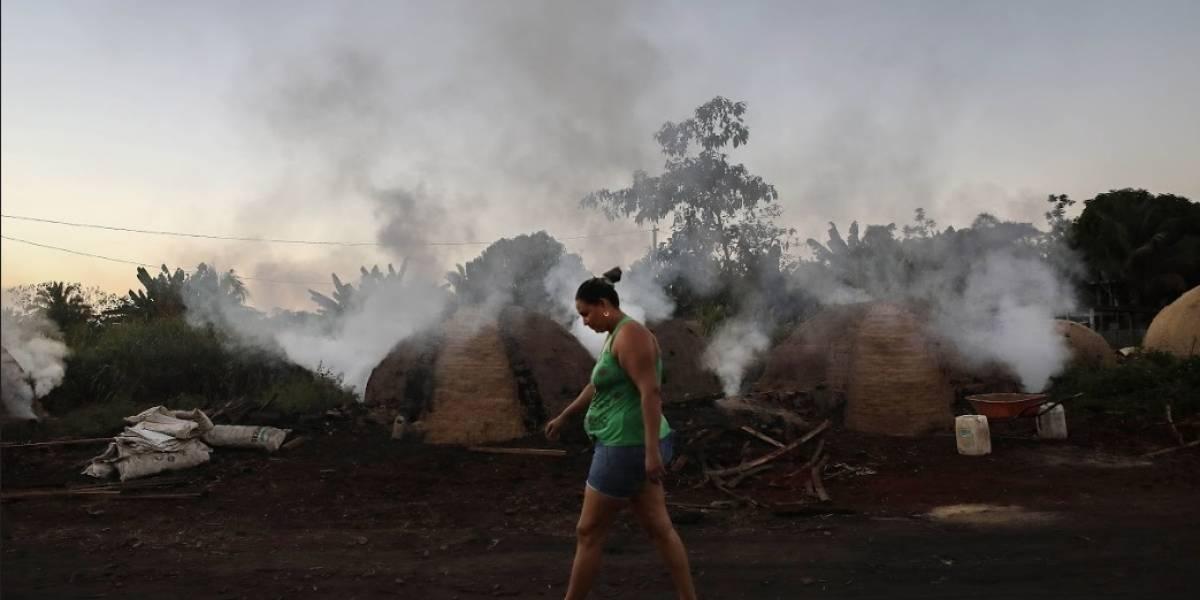 Selva amazónica sufre las políticas de Bolsonaro