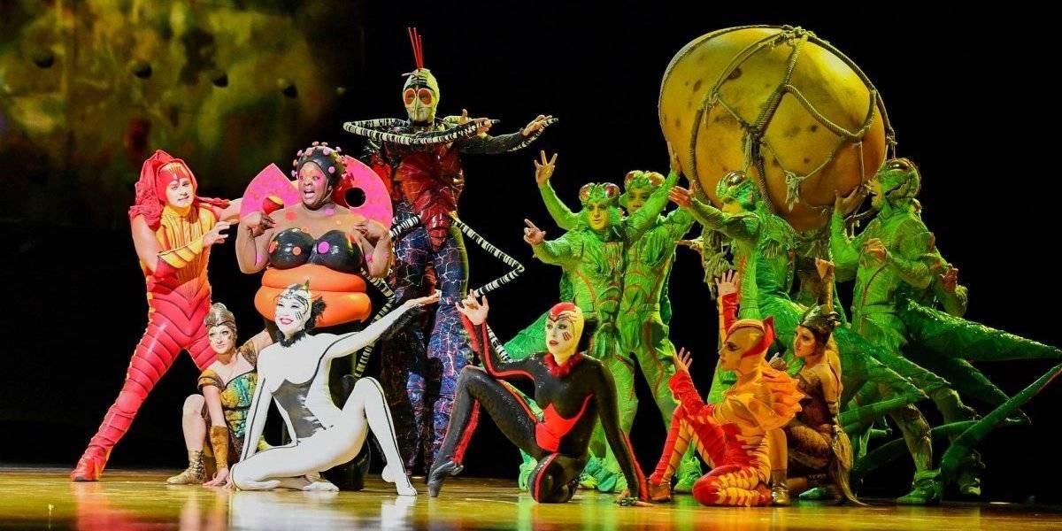ZOOM: Por primera vez el Circo del Sol llegará a Medellín