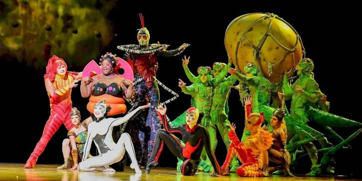 Cirque du Soleil se declara en quiebra y despedirá a 3.840 trabajadores