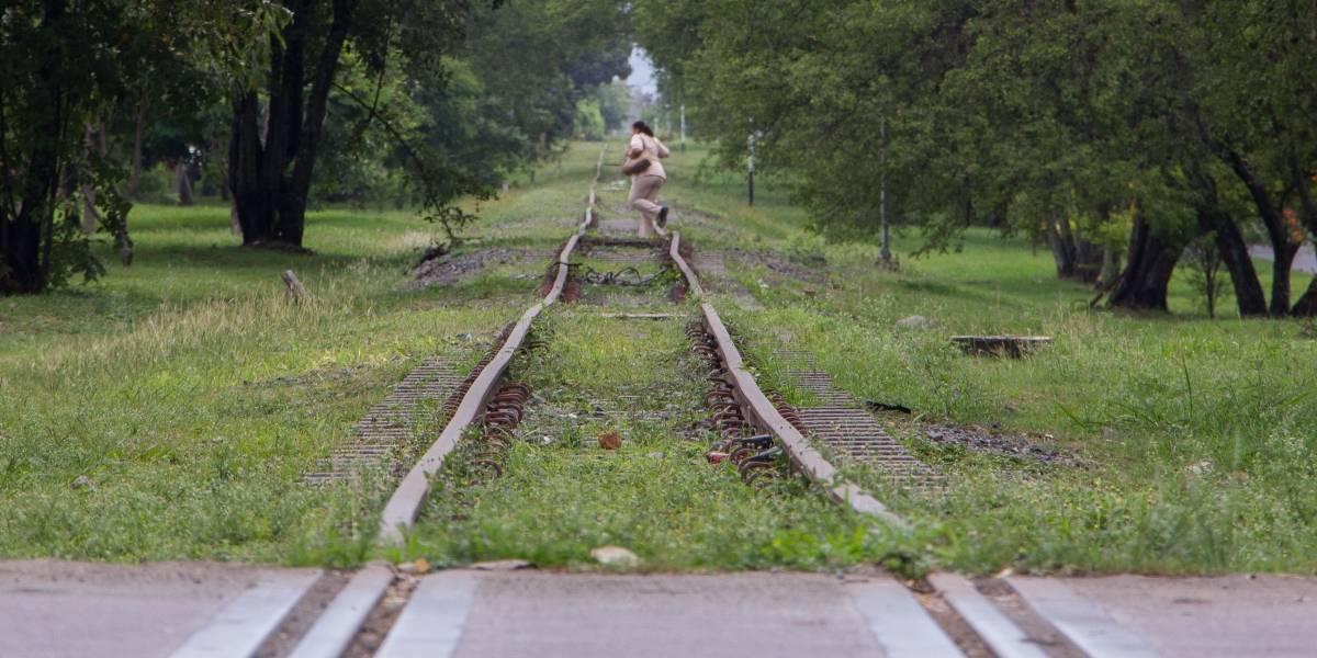 Lo que debe saber sobre el tren de cercanías que se construirá en el Valle del Cauca