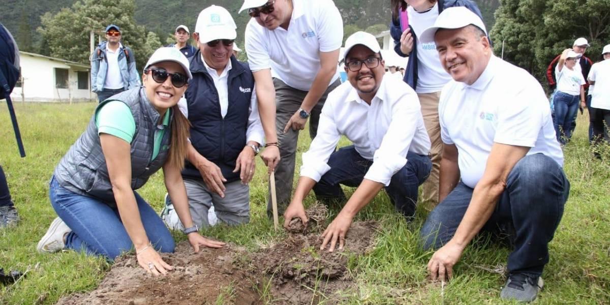 Banco del Pacífico siembra mil árboles en el Pululahua