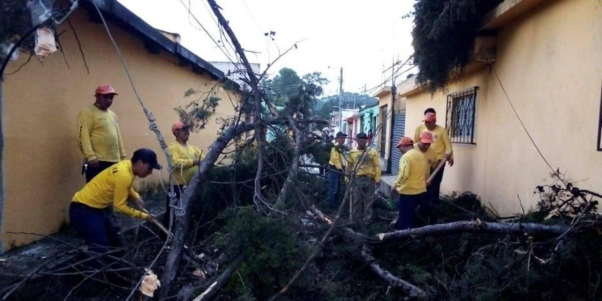 Retiran ramas de 23 árboles caídos en la ciudad de Quetzaltenango