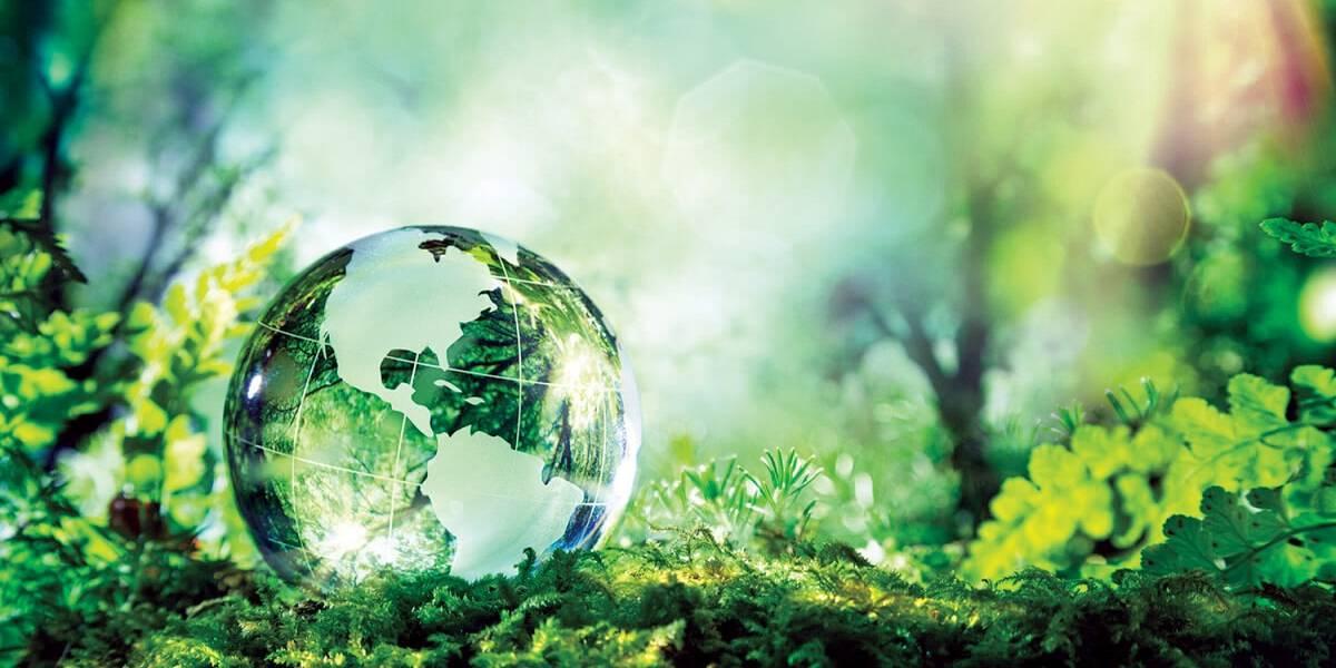 Viva Melhor: 7 atitudes que fazem bem para a saúde e o meio ambiente