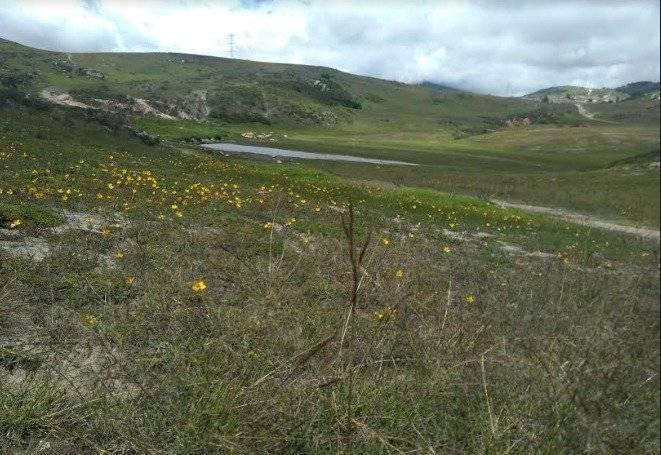 Cerro Seco, el paraíso ecológico que rodea el sur de la capital