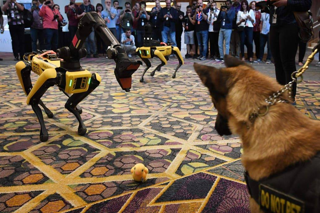 El impresionante perro robot de Boston Dynamics ya casi está listo para ser puesto en venta