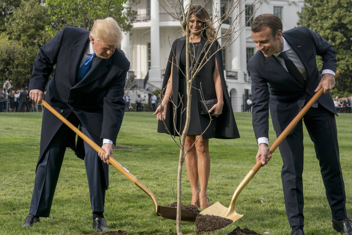 árbol de la amistad Trump y Macron