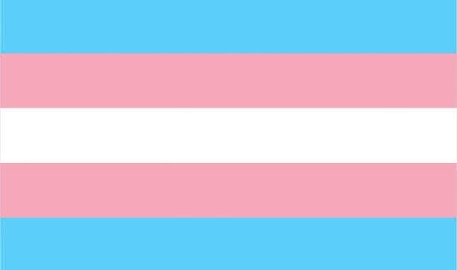 Transgénero. Monica Helms la diseñó en 1999. El azul claro es el color tradicional para los bebés varones, el rosa es para las niñas y el blanco en el medio es para aquellos que están en transición, aquellos que sienten que tienen un género neutral o no, y los que están intersexuales Foto: Wikimedia