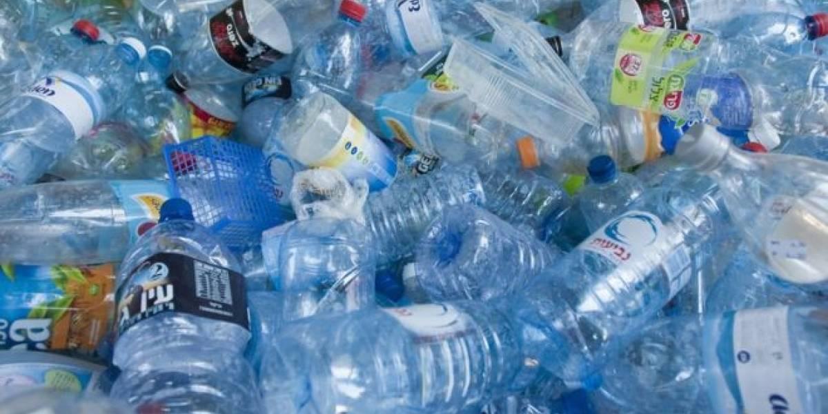 Recolectan firmas para evitar que se derogue acuerdo que prohibe uso del plástico