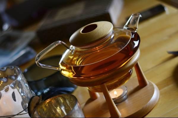 Como tomar el te de ajenjo para adelgazar