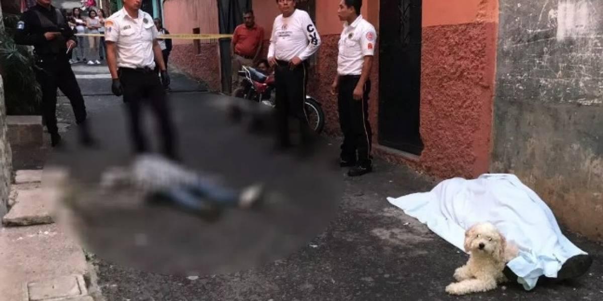 Asesinan a hombre en la zona 16 y perro no se aparta de su cadáver