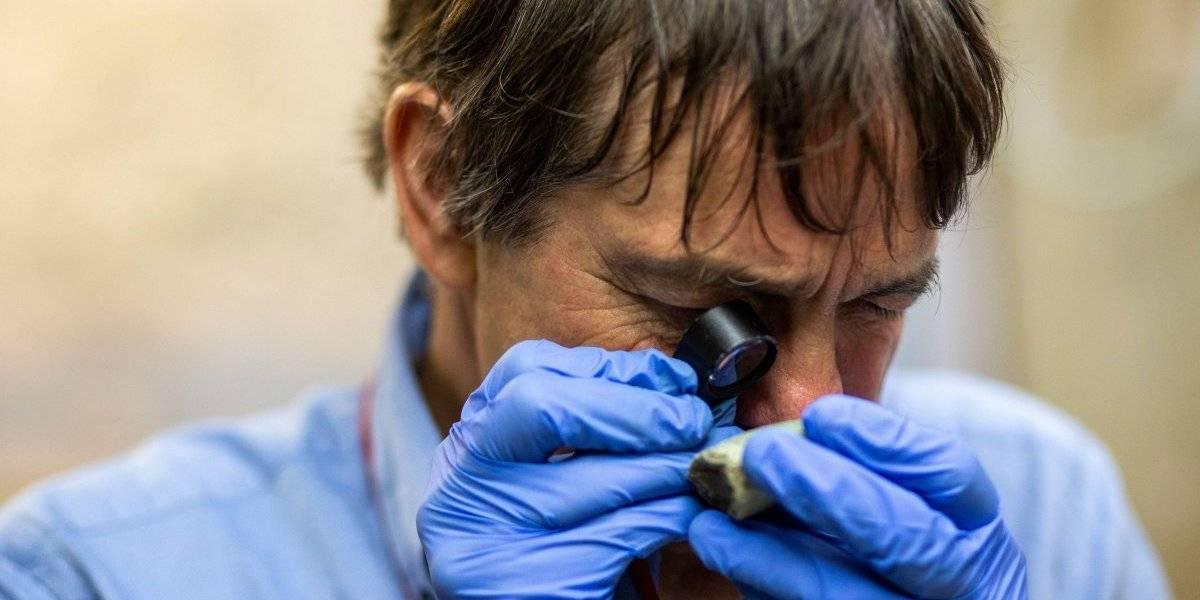 Reconocido geólogo visita la UPR para investigar el origen del jade
