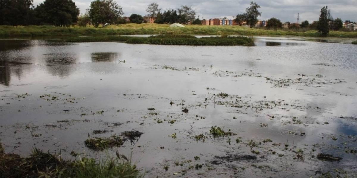 Tribunal confirma medidas en defensa de humedales, pero el Distrito seguirá con la intervención